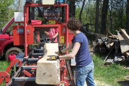 milling a sycamore tree a friend gave me